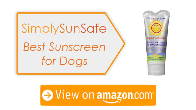 Best Sunscreen For Dogs Nose