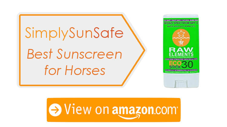Can You Put Human Sunscreen On Horses