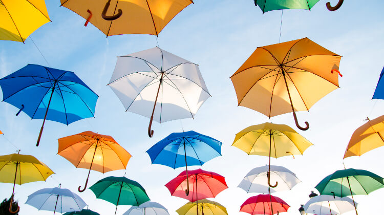 Best Windproof Umbrella